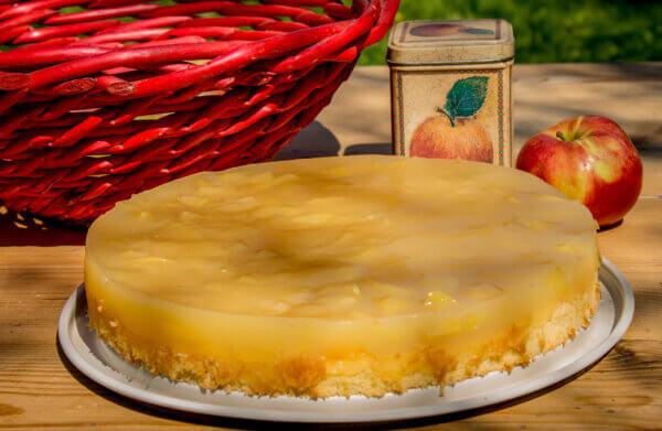 Piškot s jablky a pudinkem